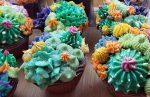 Succulent soap cupcakes