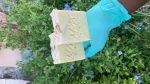 Oatmeal Lavender Cold Processed Soap